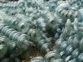 厦门玻璃绝缘子回收厂家、收购瓷瓶绝缘子厂家