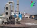 废气净化 喷淋塔工业废气处理 鑫泰环保直销
