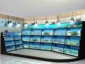 广州酒店海鲜鱼池,广州学校海鲜鱼池