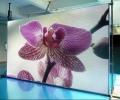 中山企事业单位医院学校LED全彩屏租赁屏制作安装