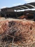 德州光伏线缆回收德州电缆回收德州废电缆回收