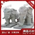 芝麻白石雕大象
