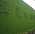 绿色塑料草坪围墙多少钱一平米