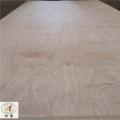 lvl层积材木方9000X100X100订制多层板