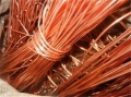 昆山蓬朗镇回收钨钢钨钼镍钛钴锡刀具丝锥等稀有金属