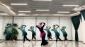 龙华古典舞培训机构中国舞培训