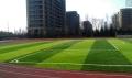 足球场人造草坪供应商