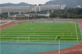 足球场人工草坪维护