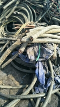 回收废黄铜多少钱一米 本地今日