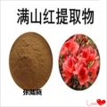 杜鹃花提取物10:1 杜鹃花叶超微粉 植物源生根剂