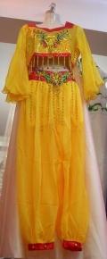 舞蹈服装印度舞肚皮舞民族舞蹈服装租赁