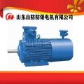YBK2-160L-8防爆电机价格,厂家,说明书