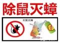 上海餐馆除老鼠 上海怎样清除白蚂蚁 上海宾馆杀灭跳蚤