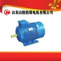 高效率好品质YBK2-160M2-8防爆电机价格