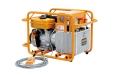 HPE-4日本IZUMI汽油机液压泵