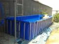室内养殖帆布水池-无毒无味家庭帆布游泳池