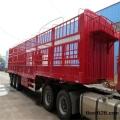 江阴到中卫货运公司配载各种货物
