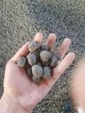 岳阳陶粒价格一种新型手捏不碎的颗粒,谊诚陶粒基地