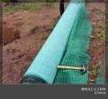 厂家加工定制护坡植草毯椰丝绿化毯 加筋绿化毯
