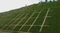 边坡修复绿化喷播专用高性能生态基材