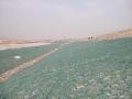安平县绿滨垫厂家,生态格网绿滨垫创新生产厂家