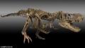 恐龙化石以往成交价格多少