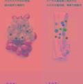 量子食品净化机氢氧分子食品净化机量子食材机