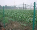 隔离网河道防护网球场护栏网草坪护栏围墙护栏厂家