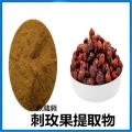 刺玫果提取物 10:1刺玫果速溶粉 刺玫果浓缩汁