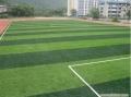 5人制足球场仿真草坪需要多少钱