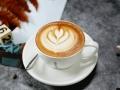 新零售新未来7咖啡新零售合伙人招募圆满落幕