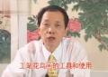 金鸿钧工笔花卉草虫技法培训课程光盘28讲8DVD