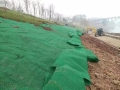 边坡防护绿化喷播三维网厂家自产自销、质量有保障
