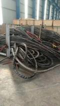 临县电缆回收-今日高价格正式开展