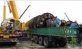高价求购安徽省池州干式电力变压器回收专业回收