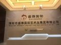 深圳市盛雅国际艺术品展览有限公司