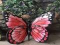 景区玻璃钢蝴蝶雕塑,彩绘蝴蝶雕塑,仿真蝴蝶雕塑小品
