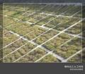 垂直绿化项目椰丝毯与椰纤毯坡度考虑因素