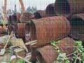 阳江专业电线电缆回收工地剩余-电线电缆回收地址