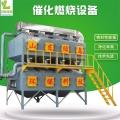 新型省电催化燃烧处理节能净化废气设备技术